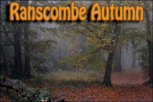 Autumn Ranscombe Challenge Winter